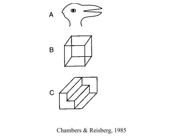 Chambers & Reisberg, 1985