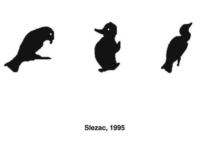 Slezac, 1995