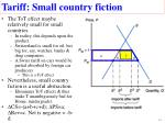 tariff small country fiction