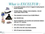 what is exceltur