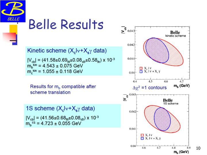 Belle Results