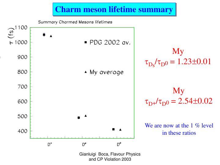 Charm meson lifetime summary