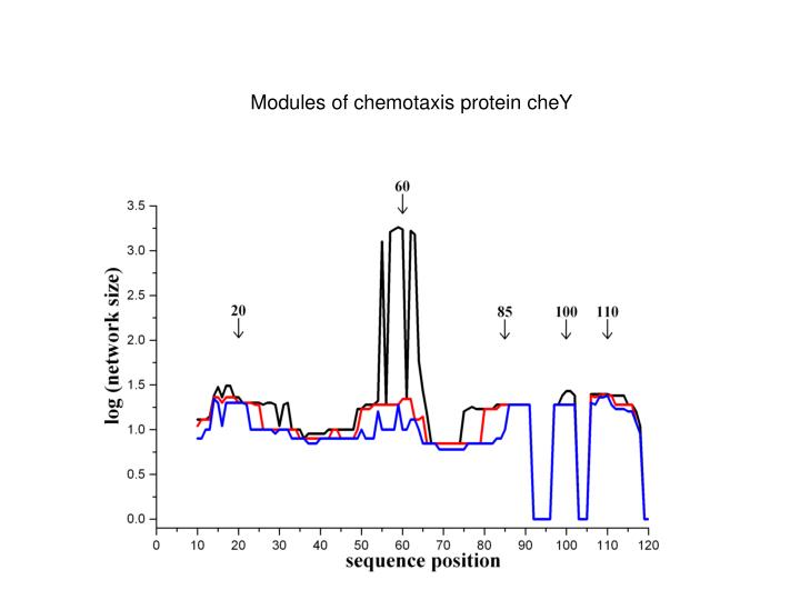 Modules of chemotaxis protein cheY