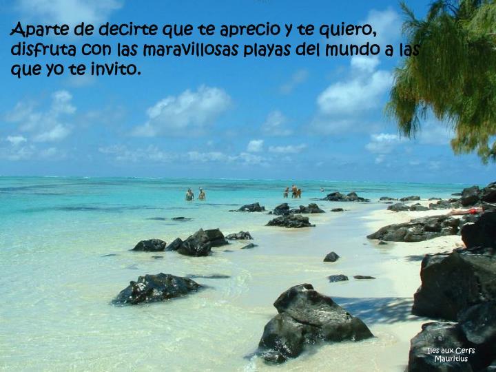 Aparte de decirte que te aprecio y te quiero, disfruta con las maravillosas playas del mundo a las que yo te invito.
