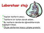 laboratuar staj