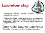 laboratuar staj1