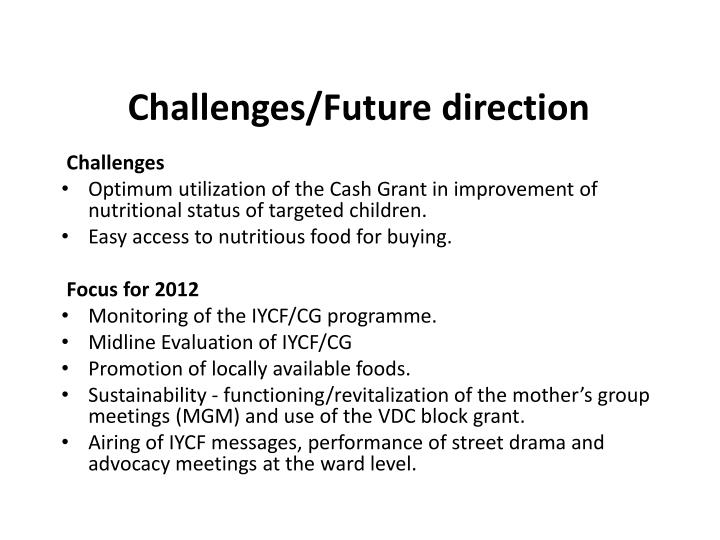 Challenges/Future direction
