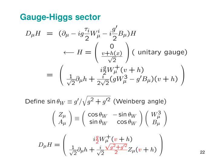 Gauge-Higgs sector