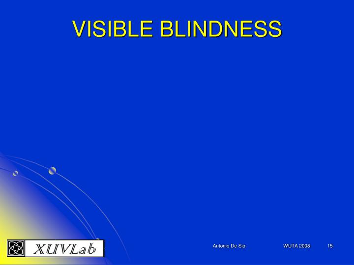 VISIBLE BLINDNESS