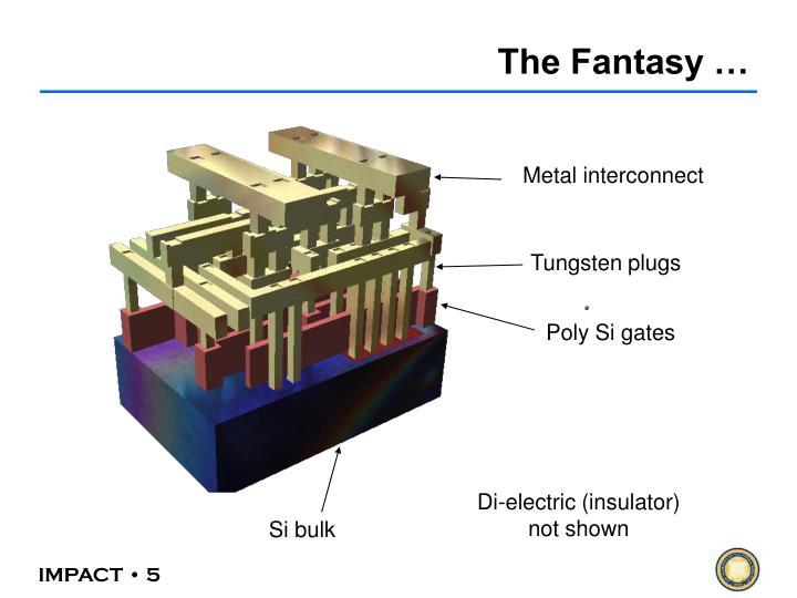 The Fantasy …