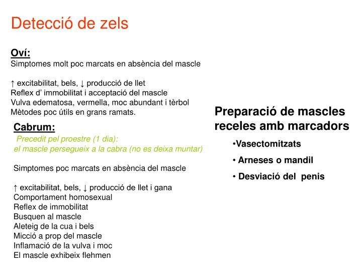 Detecció de zels