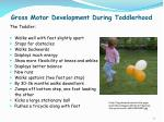 gross motor development during toddlerhood1
