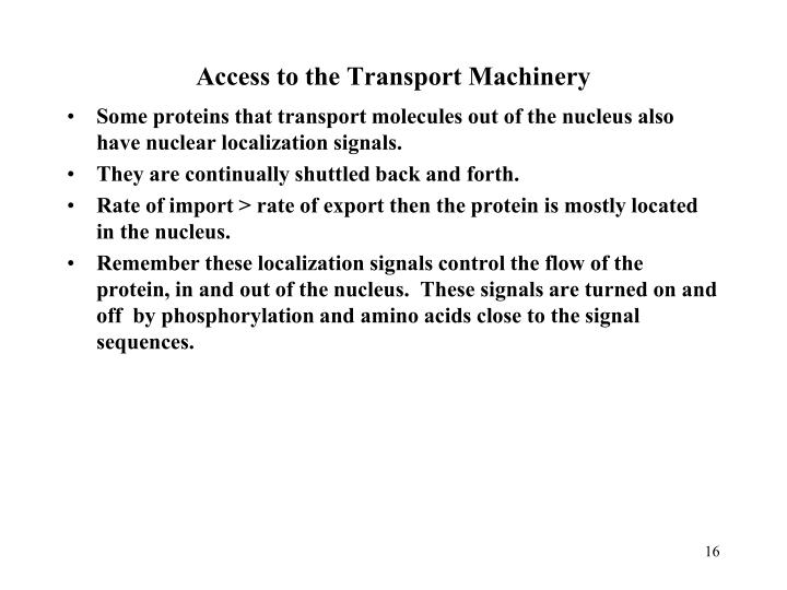 Access to the Transport Machinery