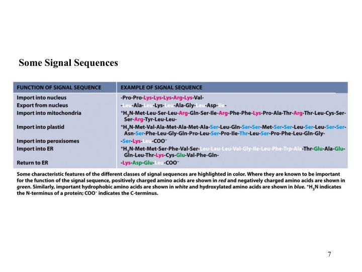 Some Signal Sequences