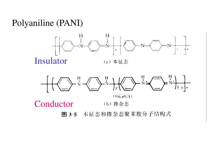 Polyaniline (PANI)