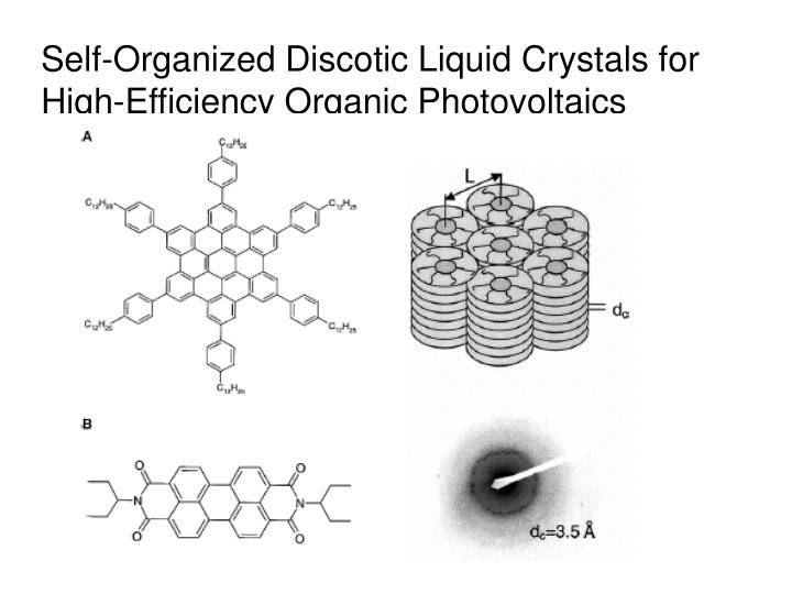 Self-Organized Discotic Liquid Crystals for High-Efficiency Organic Photovoltaics