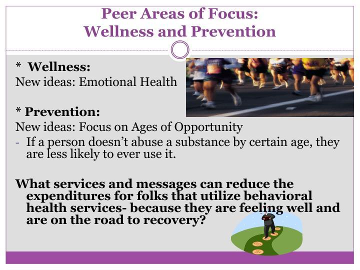 Peer Areas of Focus: