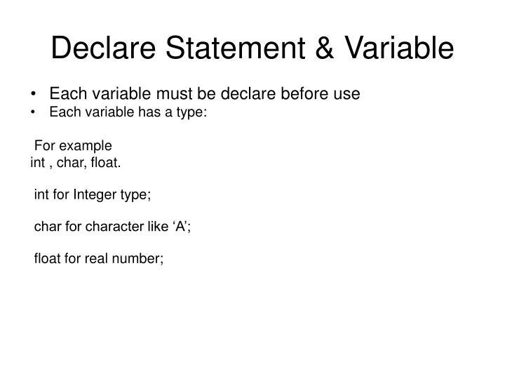 Declare Statement & Variable