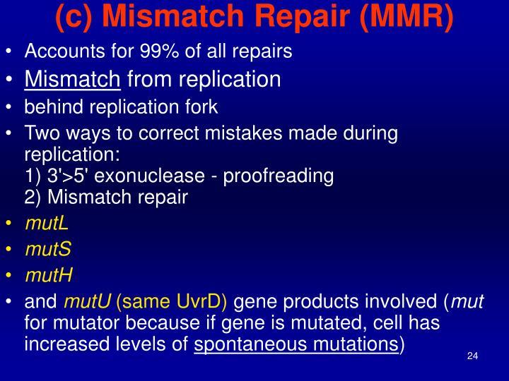 (c) Mismatch Repair (MMR)
