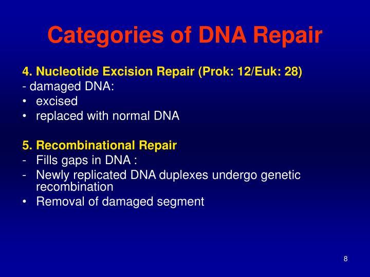 Categories of DNA Repair