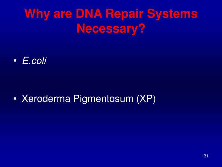 Why are DNA Repair Systems Necessary?