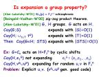is expansion a group property1