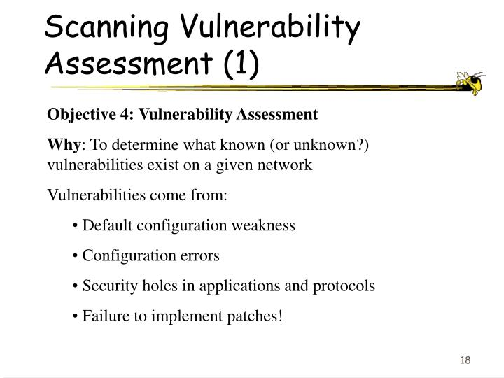 Scanning Vulnerability Assessment (1)