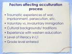 factors affecting acculturation process