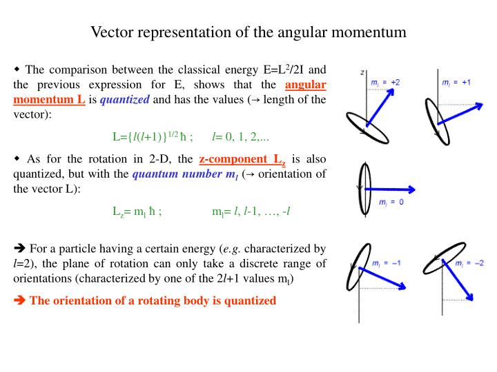Vector representation of the angular momentum