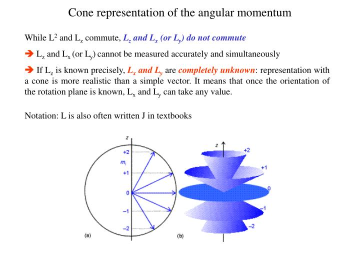 Cone representation of the angular momentum