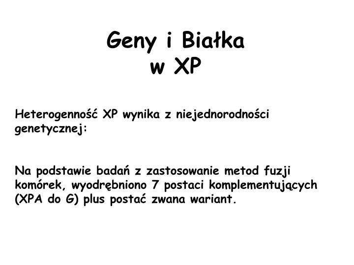 Geny i Białka