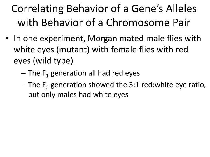 Correlating Behavior of a Gene's Alleles with Behavior of a Chromosome