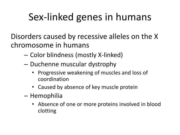 Sex-linked genes in humans