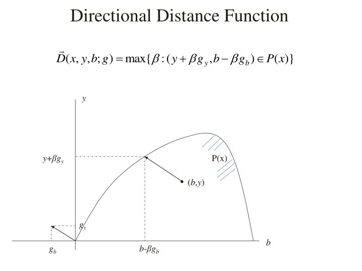 Directional Distance Function