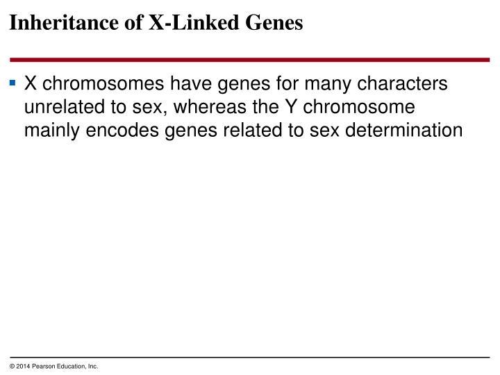 Inheritance of X-Linked Genes