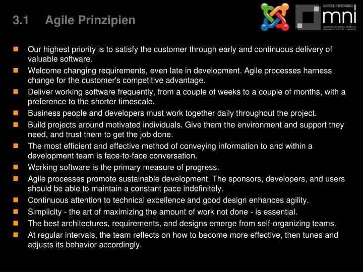 3.1Agile Prinzipien