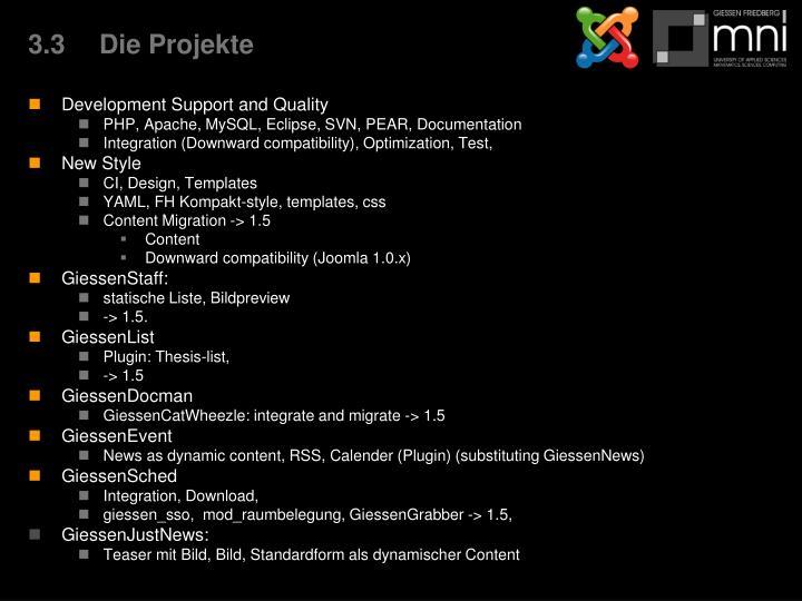 3.3Die Projekte