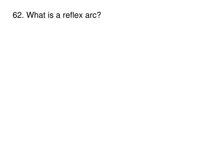 62. What is a reflex arc?