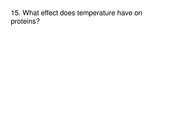 15. What effect does temperature have on proteins?