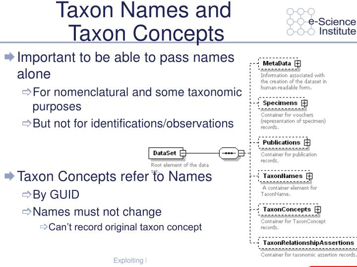 Taxon Names and
