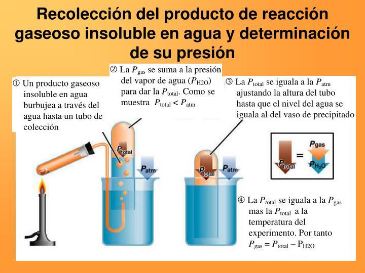 Recolección del producto de reacción gaseoso insoluble en agua y determinación de su presión