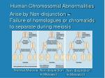 human chromosomal abnormalities