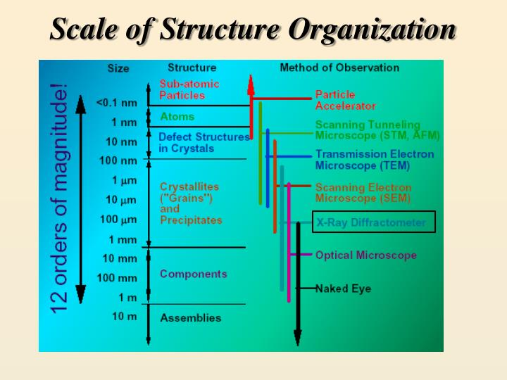 Scale of structure organization