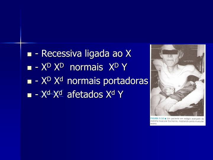 - Recessiva ligada ao X
