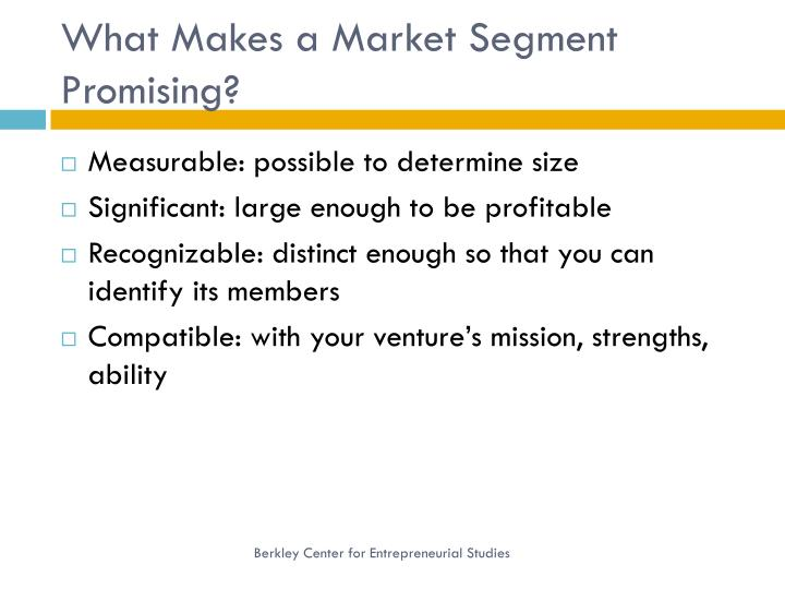 What Makes a Market Segment Promising?