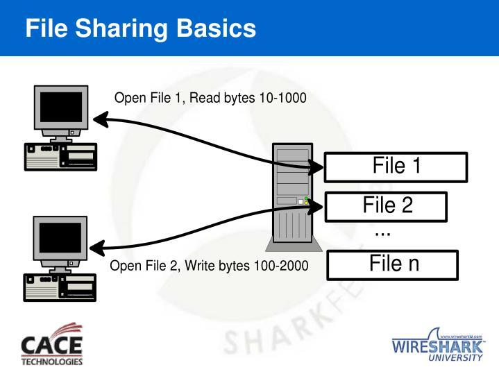 File Sharing Basics