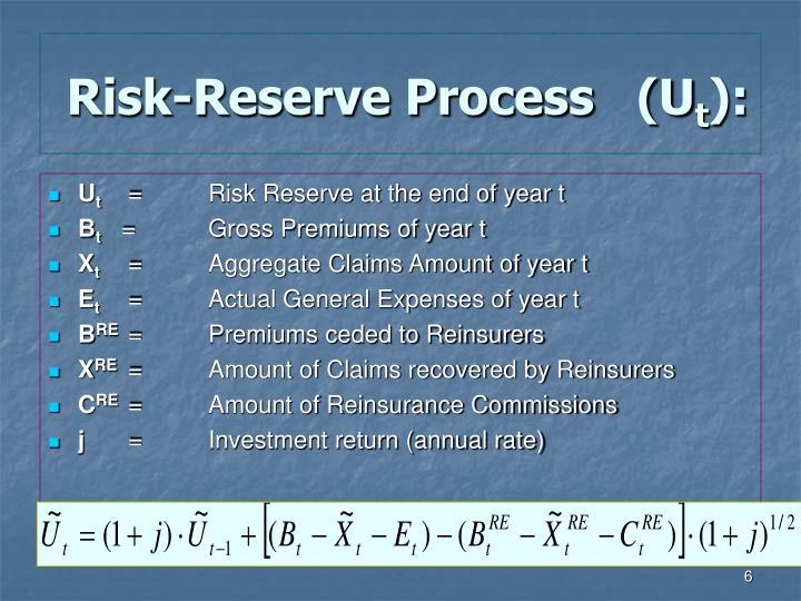 Risk-Reserve Process   (U