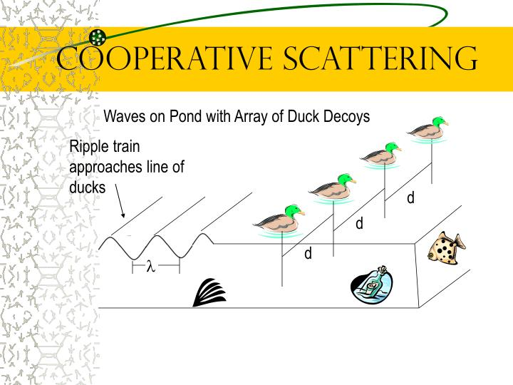 Cooperative Scattering