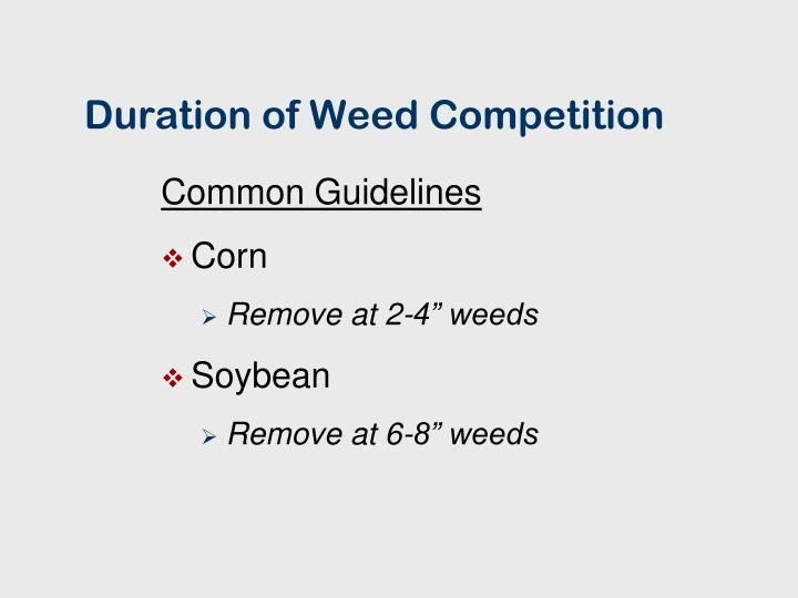 Duration of weed competition