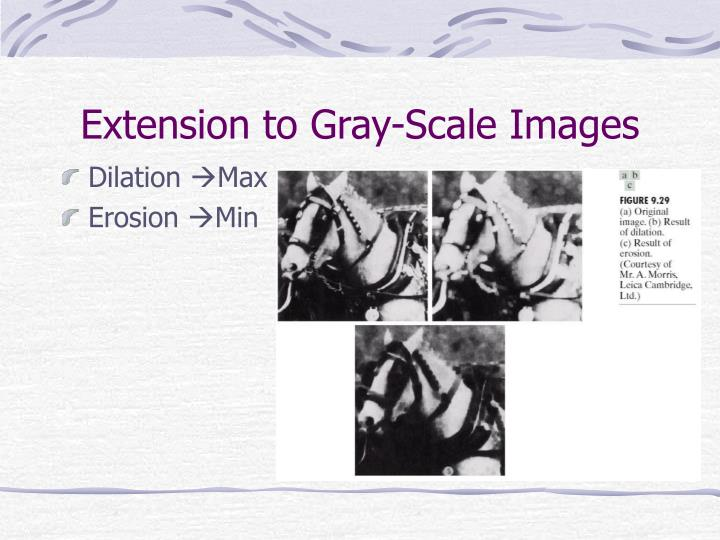 Extension to Gray-Scale Images